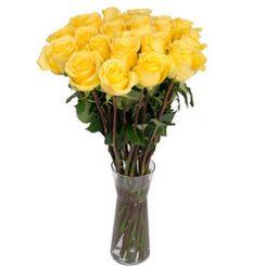 gele-rozen.jpg