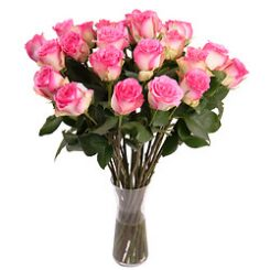 roze-rozen.jpg